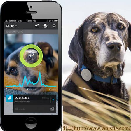 愛犬の健康もスマホで管理するヘルスケア端末『Whistle』登場