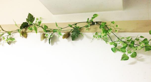plant-room