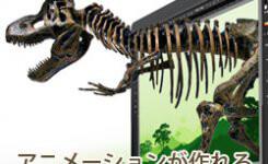 アニメーションが作れるGoogleの無料ツール『Web Designer』
