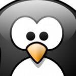 penguin2-1-img