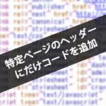 特定ページのヘッダー にだけコードを追加