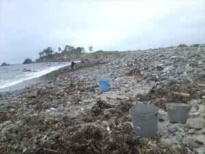 気仙沼の海岸清掃。拾っても拾っても波がまた瓦礫を運んでくる。