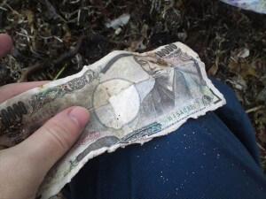 気仙沼の海岸清掃で拾った1万円札。現金もかなり出てきた。人間を感じさせて生々しい。