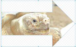 写真の加工もGoogleドライブなら無料でできる!