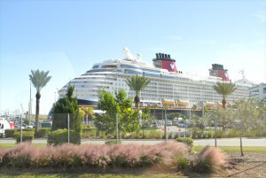cruise_1st01
