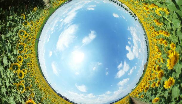 Theta撮影の360度写真の天地情報を移植する方法
