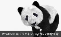 JPEGとPNG画像を圧縮するTinyPNGのWP用プラグインで表示速度アップ