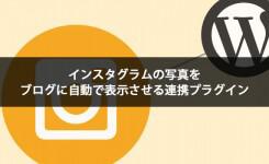 インスタグラムの写真をブログに自動で表示させる連携プラグイン
