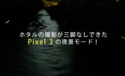 ホタルの撮影もできたPixel3の夜景モード!しかも三脚なし