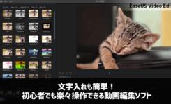 文字入れも簡単!初心者でも楽々操作できる動画編集ソフト『EaseUS Video Editor』